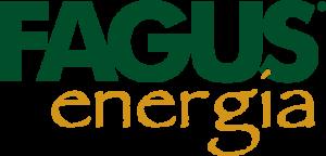 fagus_energia